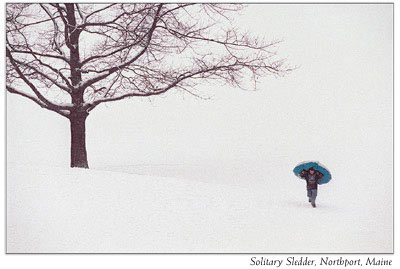 Solitary Sledder, Northport, Maine